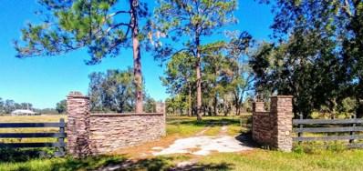 229 Kirkwood Ave, Pomona Park, FL 32181 - MLS#: 907475