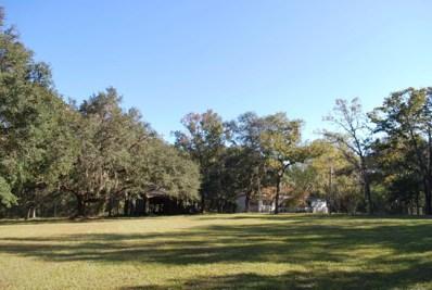1699 Big Branch Rd, Middleburg, FL 32068 - #: 908306