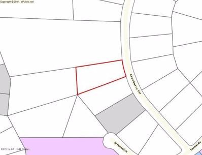 2870 Cranberry Cir, Middleburg, FL 32068 - #: 908432