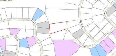 0 Chicory, Middleburg, FL 32068 - #: 908435