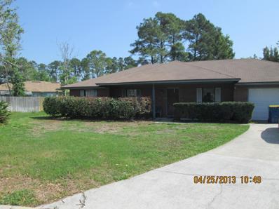 403 Scarlet Bugler Ln N, Jacksonville, FL 32225 - #: 912187