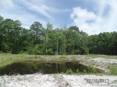 Cedar Creek Farms Rd, Glen St. Mary, FL 32040 - #: 915789