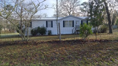 262 County Road 21, Hawthorne, FL 32640 - MLS#: 916998