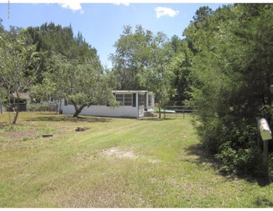 119 Breezewood Cir, San Mateo, FL 32187 - MLS#: 917631