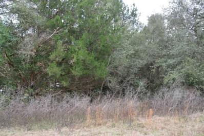 Immokalee Rd, Keystone Heights, FL 32656 - #: 921113
