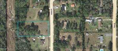 17 Bullrush Ct, Middleburg, FL 32068 - #: 924045