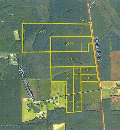 Lot 4 Turkey Town Ln, Callahan, FL 32011 - #: 925132