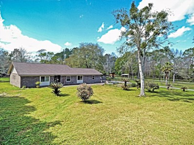 2320 S Dolphin Ave, Middleburg, FL 32068 - #: 926029