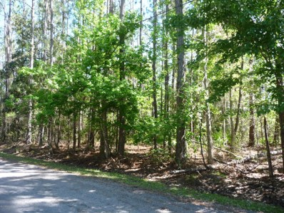 East Palatka, FL home for sale located at  0 Old Spanish Bluff Trl, East Palatka, FL 32131