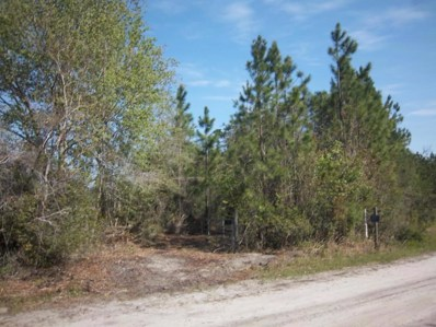 Glen St. Mary, FL home for sale located at  0 Bluff Creek Rd, Glen St. Mary, FL 32040