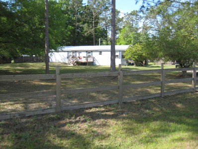 4799 Wheat Ct, Middleburg, FL 32068 - #: 929305