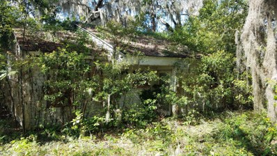 118 Amos Pond Trl, Crescent City, FL 32112 - #: 930011