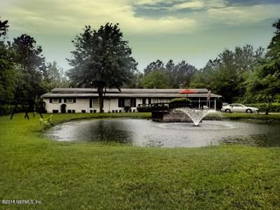 4681 Co Rd 218, Middleburg, FL 32068 - #: 930983