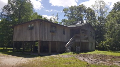 5250 Hide-A-Way Dr, Jacksonville, FL 32258 - #: 933347