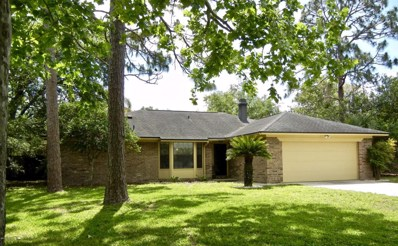 803 Lightwood Ct, Orange Park, FL 32065 - #: 933962