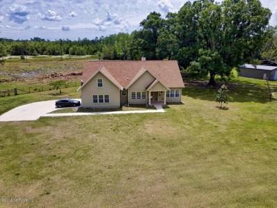Hampton, FL home for sale located at 9639 SE County Road 221, Hampton, FL 32044