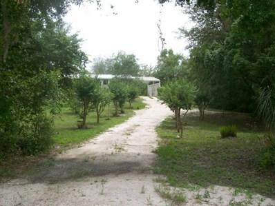 437 Lake Como Dr, Pomona Park, FL 32181 - #: 938774