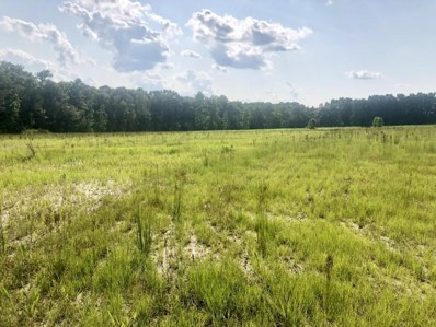 54500 Wildlife Way, Callahan, FL 32011 - MLS#: 939817