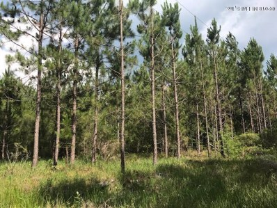Glen St. Mary, FL home for sale located at  0 Boyce Rd, Glen St. Mary, FL 32040