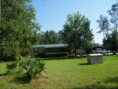 34 Coriander Ter, Middleburg, FL 32068 - #: 943120