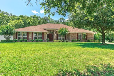 1347 McGirts Creek Dr E, Jacksonville, FL 32221 - #: 944607