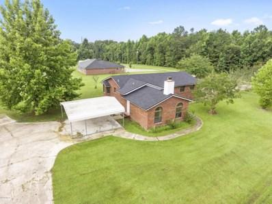 4335 Hawk Haven Rd, Middleburg, FL 32068 - #: 945056