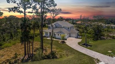 294 Costa Del Sol Dr, St Augustine, FL 32095 - #: 946979