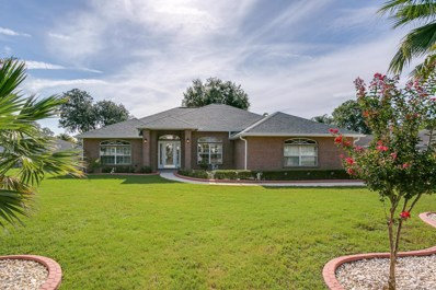 2591 Spring Meadows Dr, Middleburg, FL 32068 - MLS#: 947752
