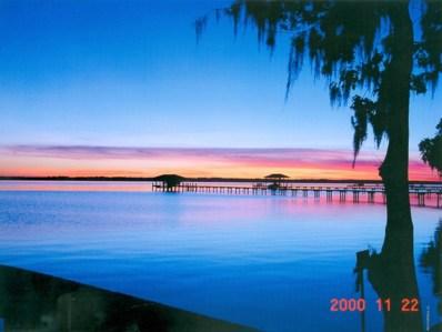 13910 Mandarin Oaks Ln, Jacksonville, FL 32223 - #: 948606