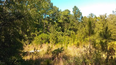 Middleburg, FL home for sale located at 18 Ivy Ct, Middleburg, FL 32068