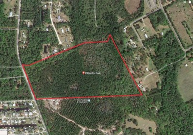 East Palatka, FL home for sale located at 370 E River Rd, East Palatka, FL 32131