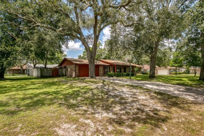 5407 Jackson Ave, Orange Park, FL 32073 - #: 951716