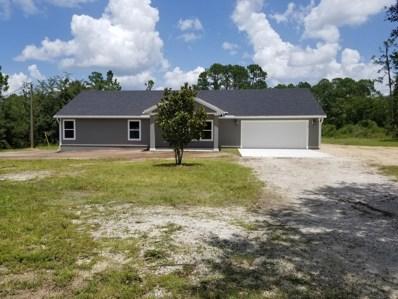78 Cinnamon St, Middleburg, FL 32068 - #: 951806