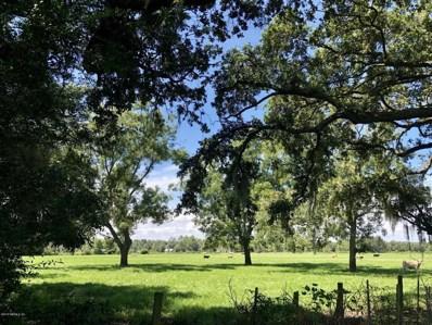 0 S Prong Cemetery Rd, Sanderson, FL 32087 - #: 951874