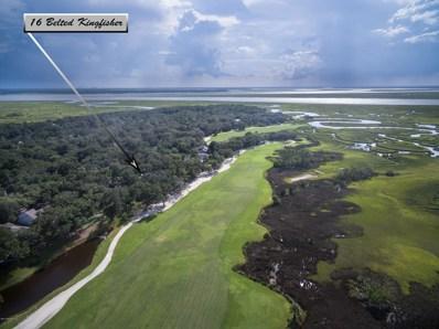16 Belted Kingfisher Rd, Fernandina Beach, FL 32034 - #: 953225