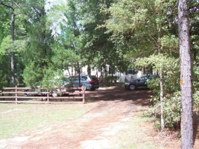 5678 Christian Camp Rd, Keystone Heights, FL 32656 - #: 956561