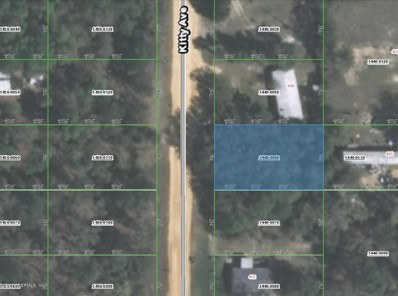 Interlachen, FL home for sale located at  1440-0060 Kitty Ave, Interlachen, FL 32148