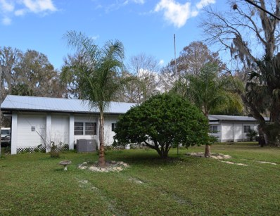 177 Palm Dr, Georgetown, FL 32139 - #: 957893