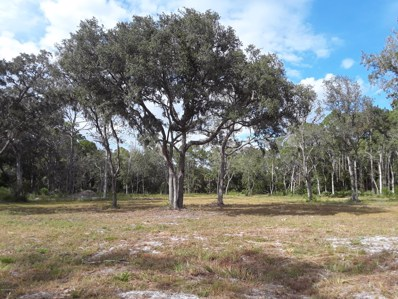 East Palatka, FL home for sale located at 0 Cr 207 A, East Palatka, FL 32131