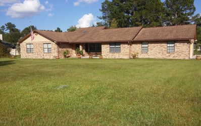 2241 Aaron Dr, Green Cove Springs, FL 32043 - #: 960150
