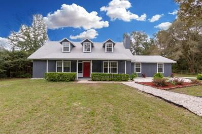 4675 Armadillo St, Middleburg, FL 32068 - #: 962754