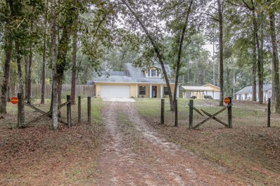 4800 Gopher Cir, Middleburg, FL 32068 - #: 968091