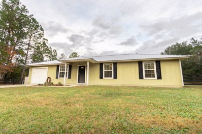 Middleburg, FL home for sale located at 2605 Indigo Ave, Middleburg, FL 32068