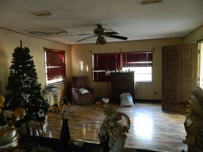 2075 Sikes Rd, Green Cove Springs, FL 32043 - MLS#: 976787