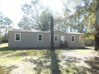 3517 County Road 215, Middleburg, FL 32068 - #: 977438