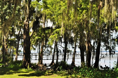 Green Cove Springs, FL home for sale located at  0 Deer Island Rd, Green Cove Springs, FL 32043