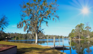 Green Cove Springs, FL home for sale located at 243 Jessie Lee Ct, Green Cove Springs, FL 32043