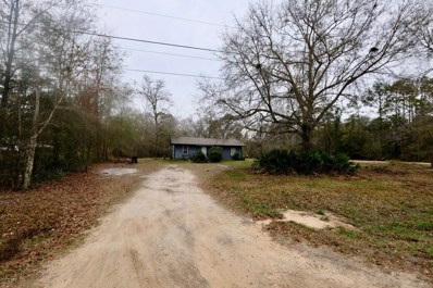 Middleburg, FL home for sale located at 77 Peppermint Ave, Middleburg, FL 32068