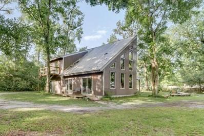 3860 Magnolia St, Middleburg, FL 32068 - #: 988187