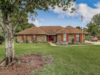 2582 Catawba Ridge Ct, Orange Park, FL 32065 - #: 988241